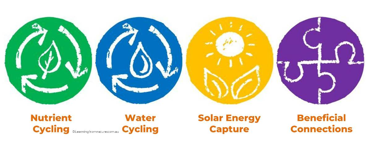 Image showing icons Ecological Functions - Learning from Nature