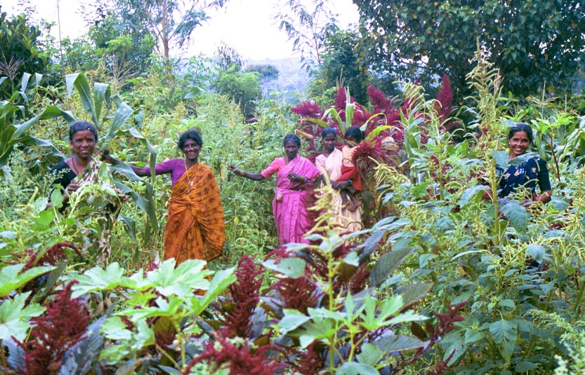 Women surrounded by easy to grow veggies