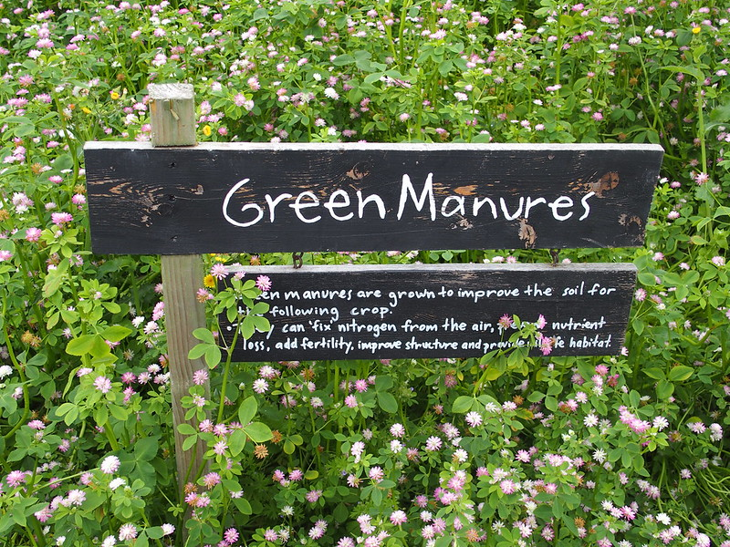 Image of Green Manure
