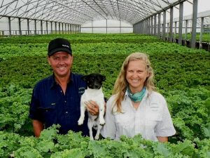 Hydroponic farmers use ecological approaches
