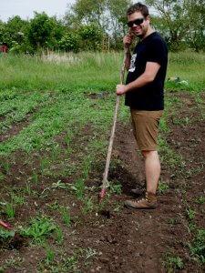 Weeding veg comp