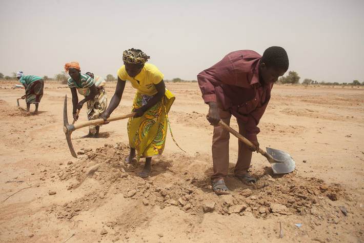 Digging holes for trees to drought-proof land in Niger
