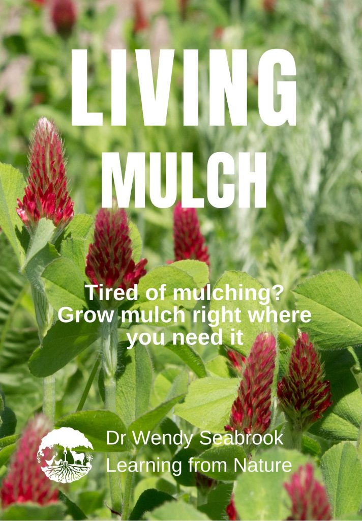 Front cover of the learning from Nature publication - Living Mulch
