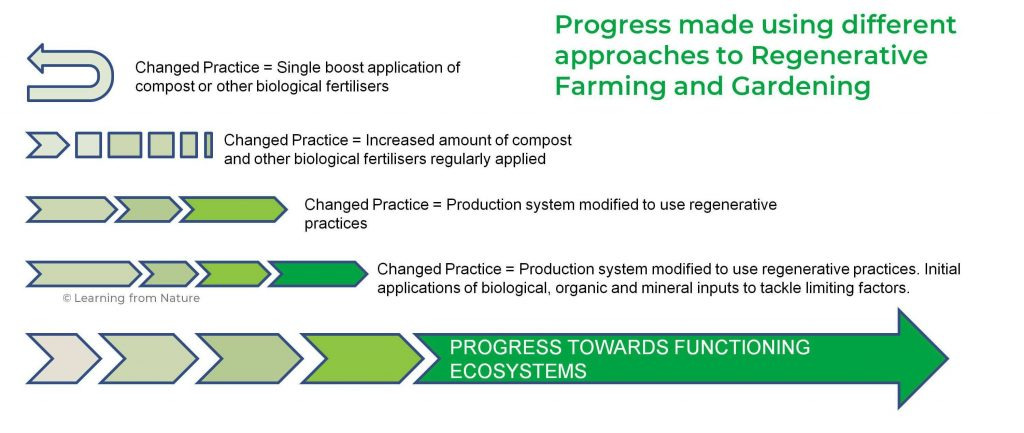 Image showing Regenerative farming and Gardening - comparison of approaches