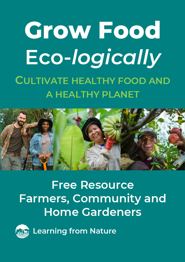 Front cover Grow Food Ecologically